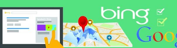 Bing, Google Organic SEO Services