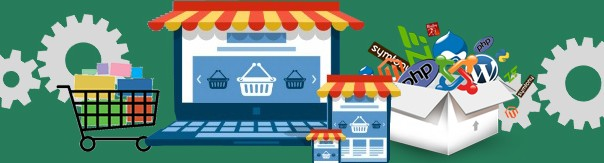 Ecommerce Website USA
