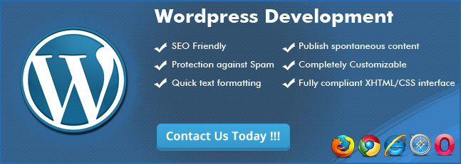 WordPress development services in bay area USA